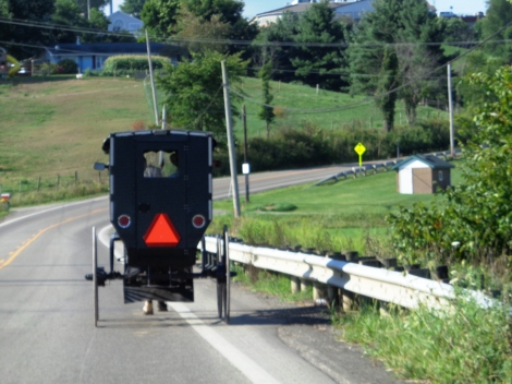 Amish Communities In Usa Map.Holmes County Ohio Home To The Largest Amish Population In The