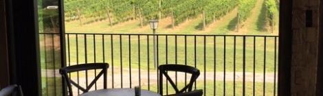 Wine tour-sip-zip-Lodge at Geneva-on-the-Lake